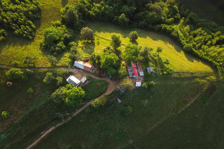 Aerial view of house by trees on land