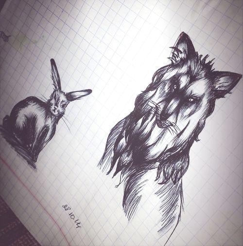 Dear rabbit... (http://vk.com/video242406500_170803232 )My Art Wolf Rabbit Sad