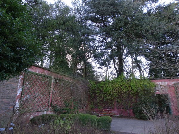 Tranquil walled garden Tree Growth No People Outdoors Day Sky Trees Autumn Beauty In Nature Tranquility Secluded Bench To Sit Plant gateway Building Exterior Brick Wall