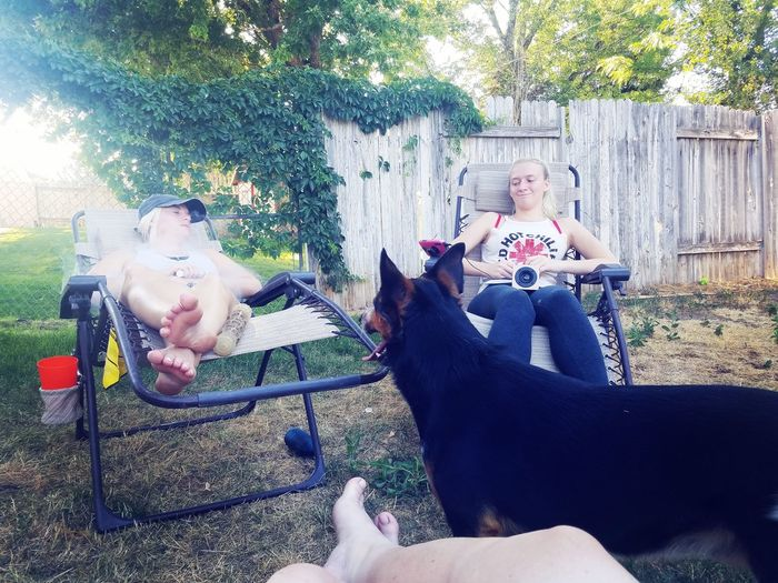 Lounging in our backyard Teenager Female Young Women Young Adult Family Time Family Backyard Casual Togetherness Dogs Pet Childhood Child Fun Tree Shadow Sibling Caucasian Sister