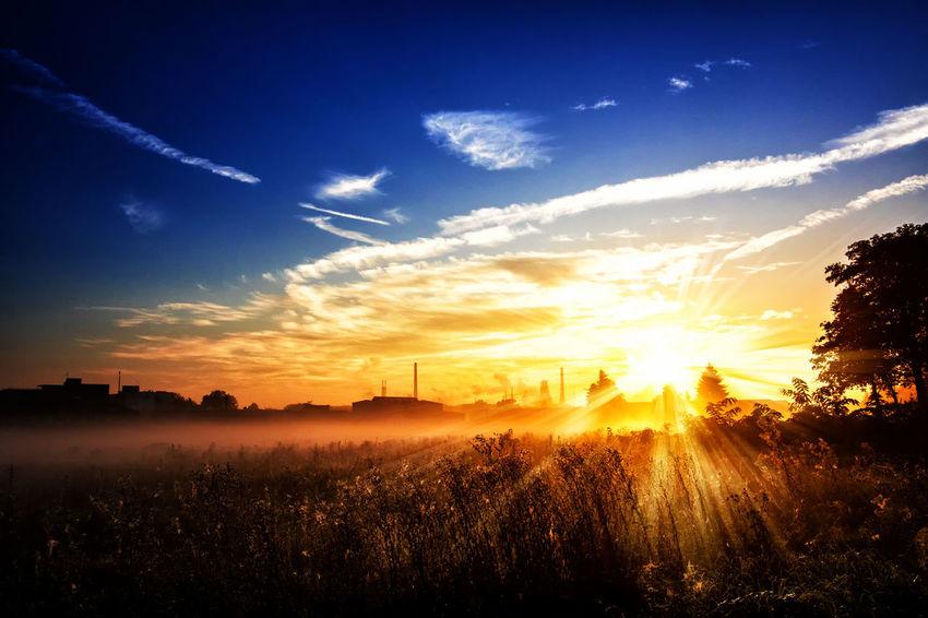 Sonnenaufgang im Herbst / Sunrise in autumn #Marcin_Adrian www.marcinadrian.de #Landscape #cityscape #Sonnenaufgang #Herbst #Sunrise #autumn #Nebel #Schleier #Dunst #Dunkelheit #Trübheit, Sonnenaufgang, Herbst, Sunrise, autumn, Nebel, Schleier, Dunst, Dunkelheit, Trübheit, Marcin Adrian, Marcin_Adrian, www.marcinadrian.de, 50389 Wesseling, werbekurier, Stadt Wesseling, Köln, Bonn, Germany, Canon, Ricoh, THETA, S, #Marcin #Adrian #Marcin_Adrian #www.marcinadrian.de #50389 #Wesseling #werbekurier #Stadt_Wesseling #Köln #Bonn #Germany #Canon #Ricoh #THETA #S Autumn Autumn Colors Autumn Leaves Cityscape EyeEm EyeEm Nature Lover EyeEm Nature Lovers HDR Morning Light Sunlight Beauty In Nature Fog Foggy Landscape Morning Dew Nature No People Sky Sun Sunlight Sunrise Sunrise_sunsets_aroundworld Sunset Tranquil Scene Wesseling