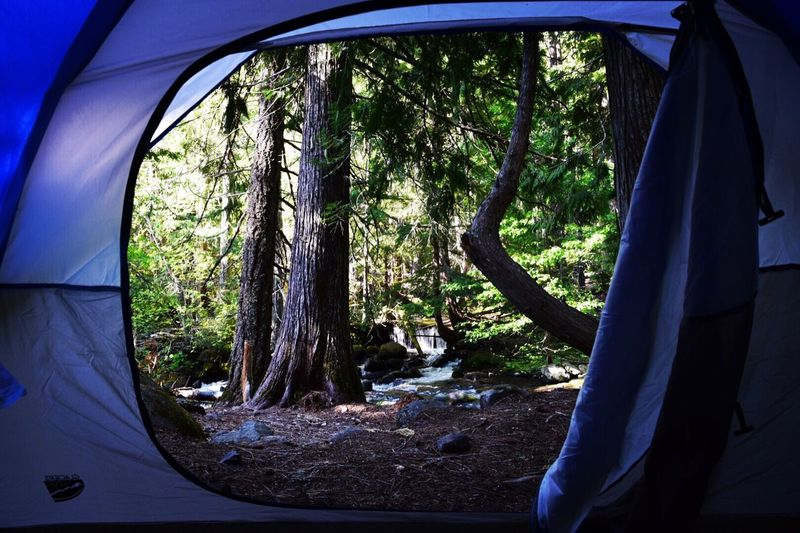View from my tent Tentview Hanging Out Hello World Taking Photos Enjoying Life Backpacking Landscape Photography Great View Hikingadventures Hiking Memorialdayweekend Outdoor Photography Oregonexplored Oregonlife Badgercreektrail Waterfall #water #landscape #nature #beautiful