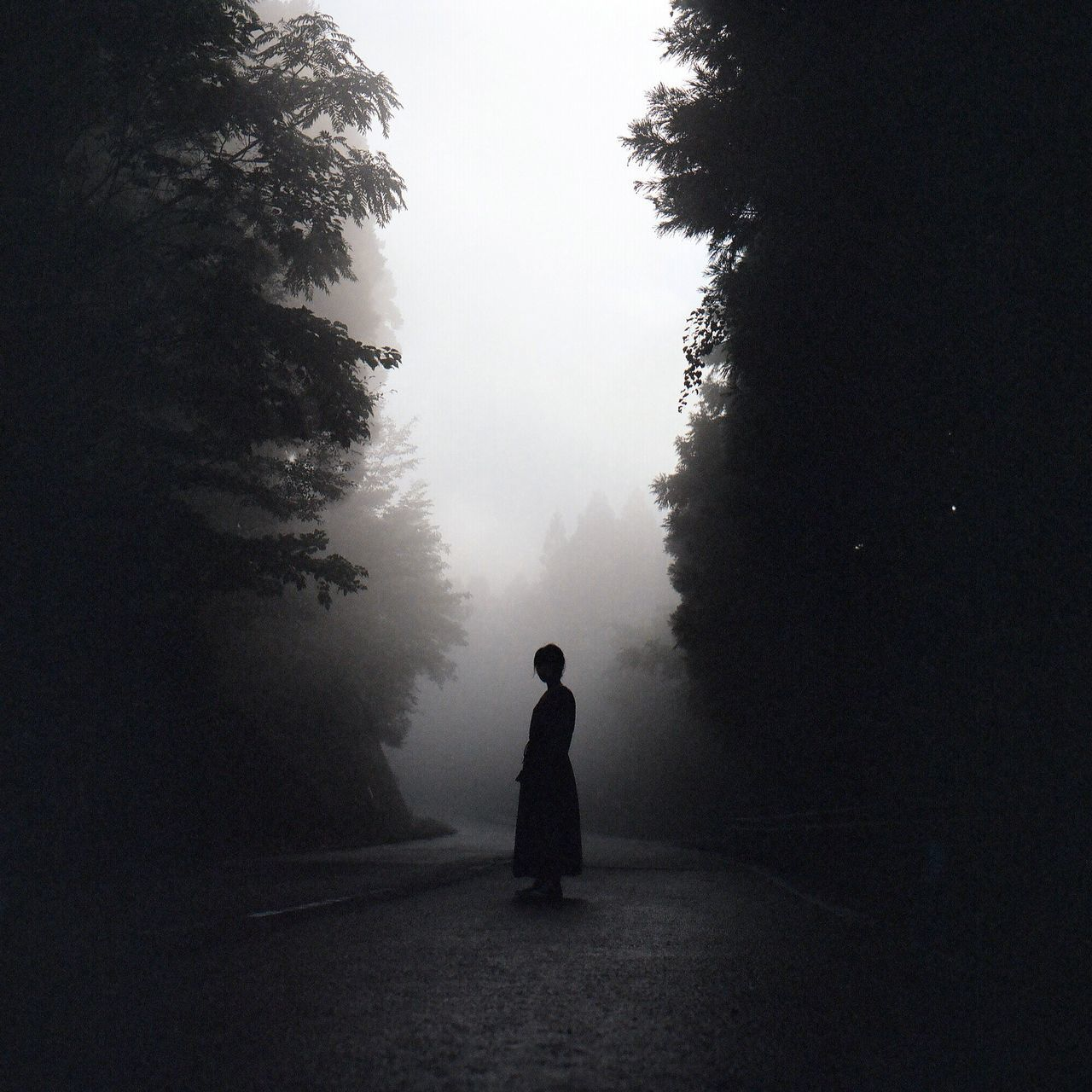 tree, rear view, fog, silhouette, full length, one person, nature, walking, the way forward, mist, real people, landscape, day, road, outdoors, beauty in nature, hazy, scenics, sky, people