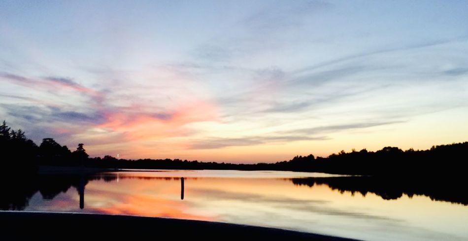 For Jon, and Cosmic Laughter EyeEm Nature Lover Tadaa Community NJ Pinebarrens