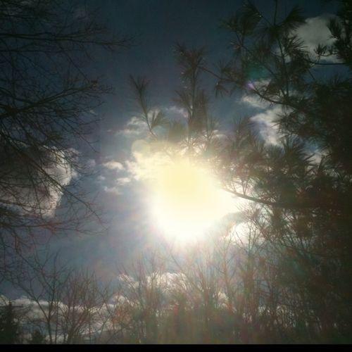 #sunflare