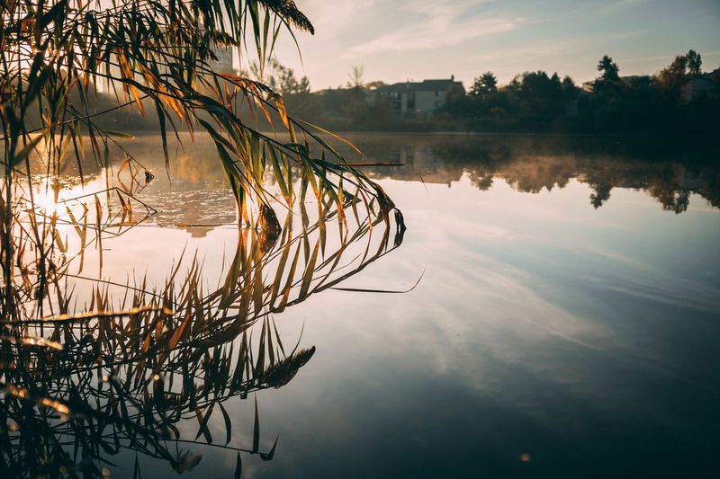 Architecture Beauty In Nature Day Lake Nature No People Outdoors Reflection Scenics Sky Sunset Tranquil Scene Tranquility Tree Water Waterfront