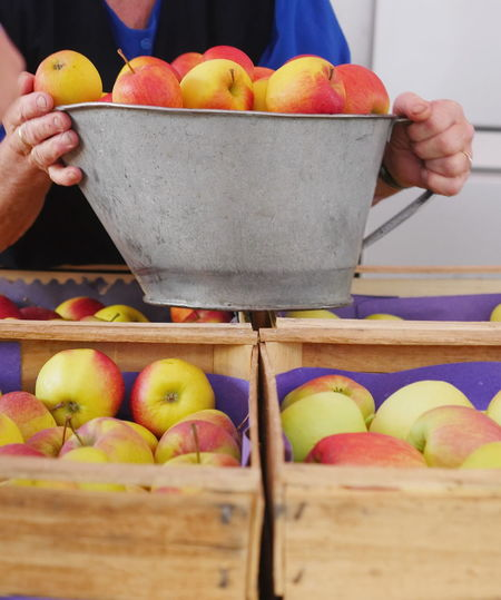 Midsection Of Woman Holding Apples In Container At Market