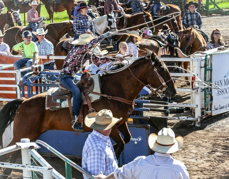 Nice big jump start out of the roping box Horse Rodeo Roping EyeEm Gallery