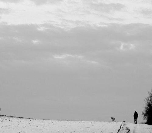 Wartberg Blackandwhite Monochrome Togetherness Real People Cold Temperature Winter Animal Themes Sky Outdoors Nature Only Men January 2017 Domestic Animals Winter 2017 Bokeh Dogwalk Dogslife Dogs Of EyeEm Winter Labrador Silhouette Dog Fieldscape