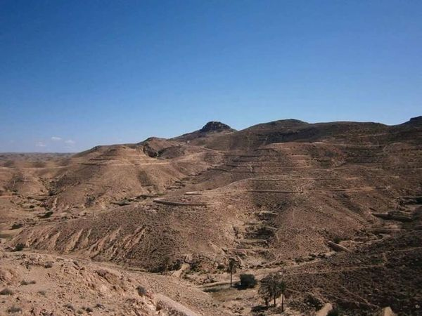 Landscape Geology Physical Geography Clear Sky Nature Outdoors Scenics Arid Climate Sky Desert Beauty In Nature No People Fossil Day Mountain Tunisia Oriental Cultures Desert Beauty Nature Sun Adult Sand Side View Landscapes