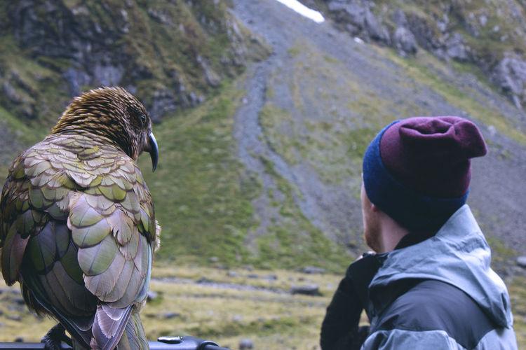 Side view of man standing by kea bird