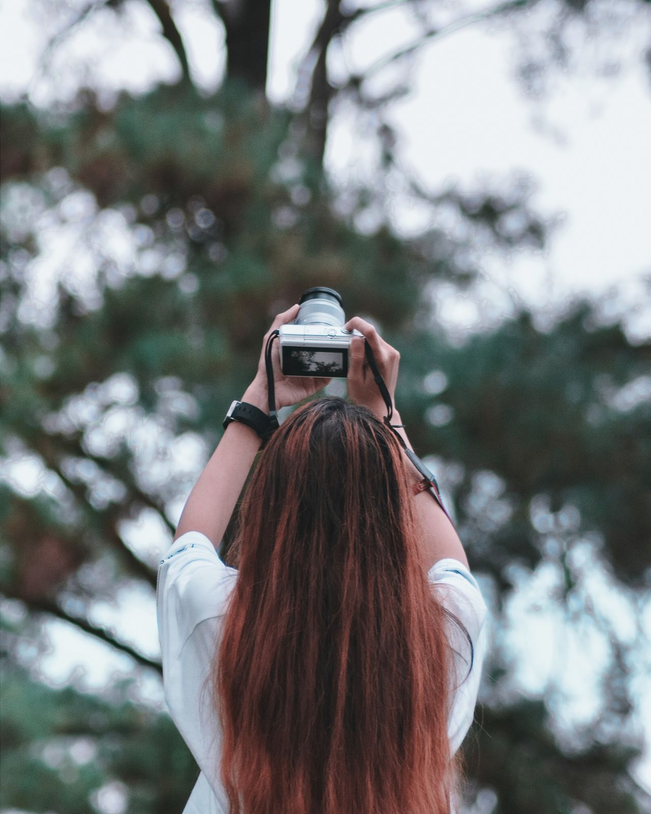Rear view of woman photographing through camera