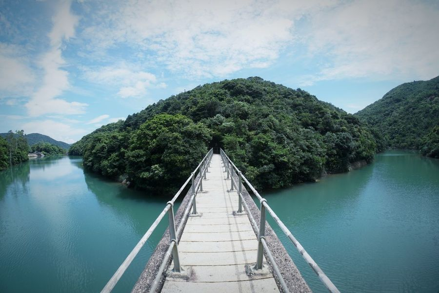 Tree Water Tranquil Scene Outdoors Sky No People Nature Beauty In Nature Day HongKong Hong Kong Reservior Hong Kong Island Birdge Scenics Green Color Lost In The Landscape An Eye For Travel