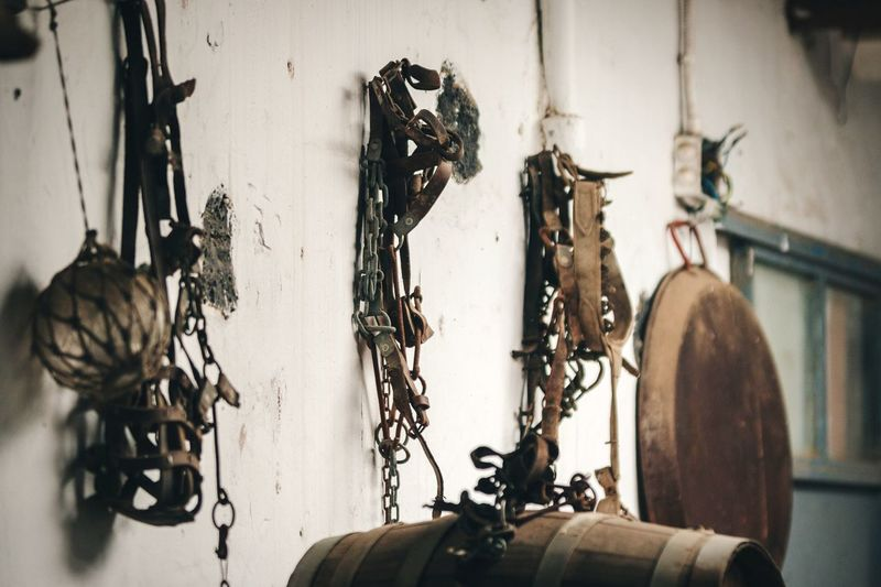 Hanging on the wall Open Edit No People Hanging On The Wall Selective Focus Tools Farming Farm Farm Life Farmer Farmer's Life Antique Old Old-fashioned Fine Art Photography Artistic Lumber Storage Storage Room Objects Group Of Objects Harness Stationary Lifestyles Lifestyle