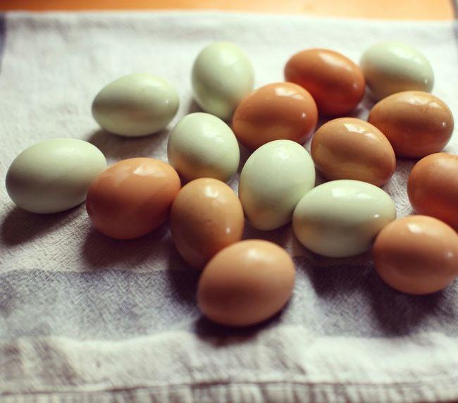 Eggs. Eggshell Egg Green Color Fresh Eggs Farm Life Poultry