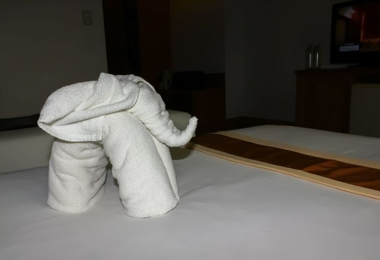 Animal Animal Photography Animal Themes Animals Art Art And Craft Art Photography ArtWork Hotel Hotel Room Hotels And Resorts Indoors  No People Room Room Decor Rooms Towel Towel Animal Towel Art Towel Art 😆 Towel Creation Towel Decoration Towel Dry Towel Elephant Towels