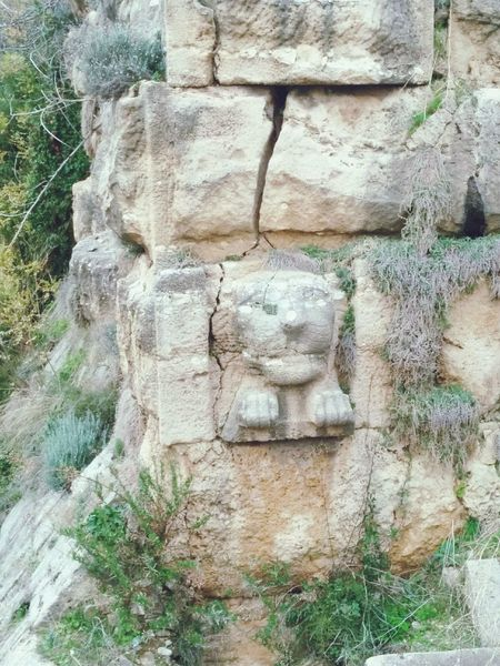 The Lion Lionshead Lion Statue Lion Rock The Wall, Antiquity Stone Wall History.
