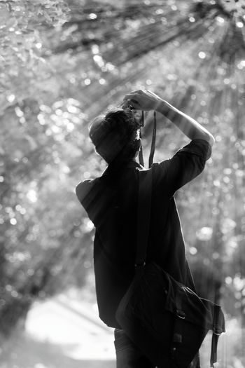 Rear view of man photographing trees at park on sunny day