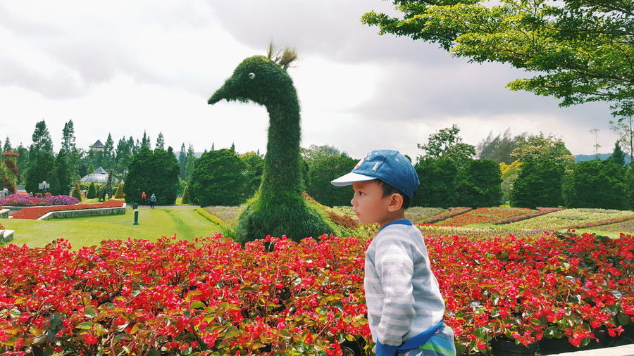 Side view of boy against bird topiary at botanical garden