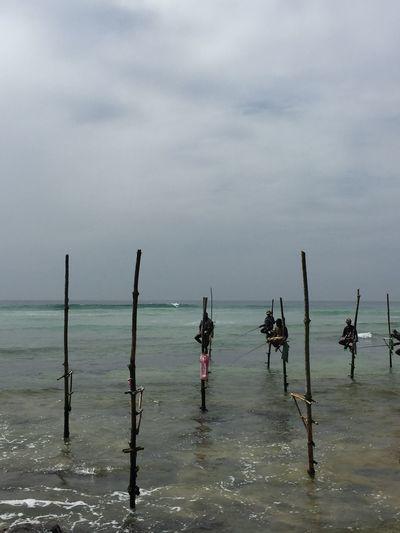 Fishermen On Sticks Sri Lanka Sri Lanka Travel Sri Lankan Fishermen Travel Destinations