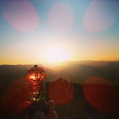 Pumpkin enjoying watching the sun set from on top of MtHelena Summer Bucketlist Montana nofilter