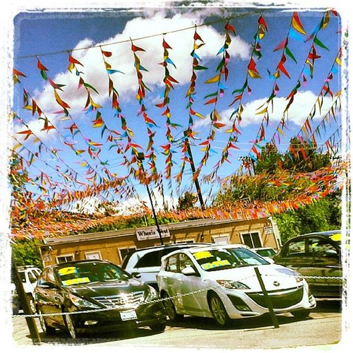 Flags Cars Colorful Sales Attention Xecar Advertisment Trailblazers_rurex Trb_pta Carlot