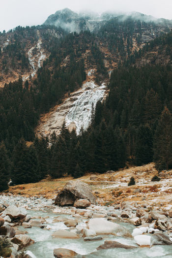 Frozen waterfall and flowing river in Austrian Alpine mountains in late autumn Peaceful Place Non-urban Scene Outdoors Flowing Water Frozen Waterfall Mountain River Forest Nobody Landscape Nature Beauty In Nature Scenics - Nature Austria Mountains Mountain No People Tranquility Tranquil Scene Day Fir Tree Coniferous Tree Rock Rocks And Water Mountain Landscape Stream Alpine