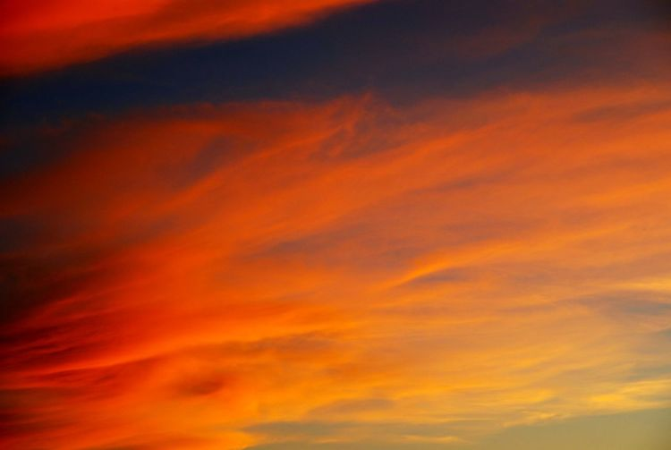 EyeEmNewHere Orange Color Abstract Sunset No People Nature Outdoors Multi Colored Sky Beauty In Nature Nikonphotography Nikon EyeEm Best Shots EyeEmBestPics P3top Portugal Eyeemphotography EyeEm Gallery EyeEm Moita Sunset And Clouds  Sunset_collection Sunsetlover Sunsets Sunset_captures
