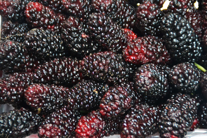Backgrounds Basar Extreme Close-up Food Food And Drink Freshness Full Frame Healthy Eating Large Group Of Objects Maulbeeren Mulberries No People Red So Delicious Vibrant Color