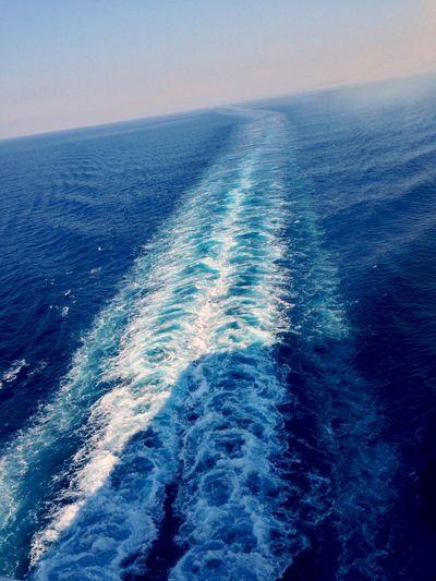 Sea Cavalloni Cruise Ship Ship Blue