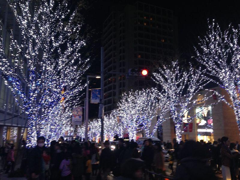 六本木 六本木ヒルズ Roppongi けやき坂 Illumination