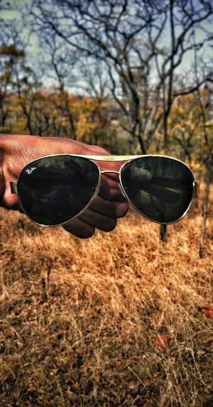Sunglasses Protection Sky Bare Tree Snow Covered Treelined Snowcapped Dead Tree Single Tree Cold Stream Tree Trunk Field Dried Plant Lone Branch Growing Dead Plant Foggy Countryside Woods
