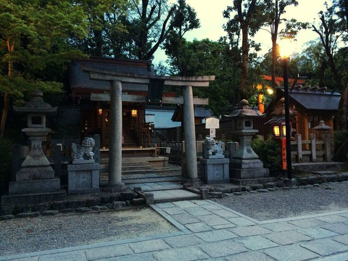 Architecture Place Of Worship Kyoto Japan ASIA Travel Travel Photography Travel Destinations Built Structure Dawn Shrine Temple
