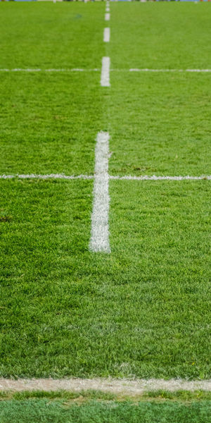 Creative Space The Creative - 2018 EyeEm Awards Green Lines Stadium Day Grass Green Color Natwest No People Outdoors Rugby Stadium