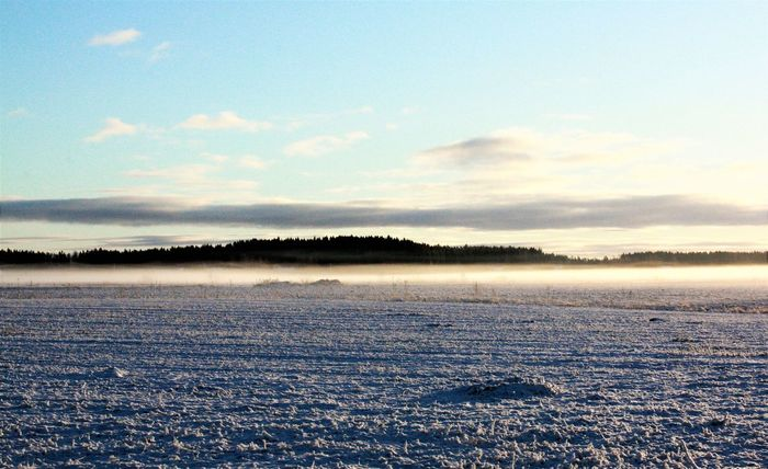 Beauty In Nature Cold Temperature Day Focus On Foreground Fog Frozen Ice Idyllic Landscape Nature No People Outdoors Scenics Sky Snow Tranquil Scene Tranquility Weather Winter
