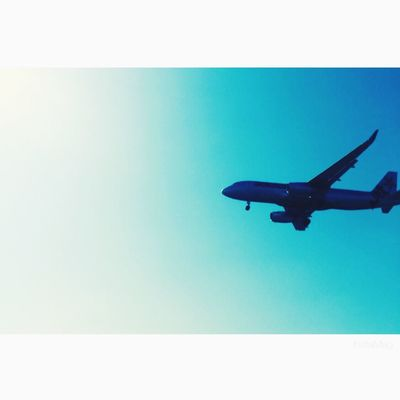 Clear Sky Blue Flying Low Angle View No People Outdoors Airplane Airplane Wing Sky ♡ Sunny☀ Nature