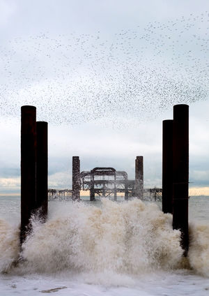 Crashing Waves, Murmuration Of Starlings Vintage Style Architecture Beauty In Nature Bird Breaking Wave Built Structure Crashing Waves  Day Horizon Over Water Motion Murmuration Nature No People Outdoors Sea Sky Water West Pier West Pier Brighton West Pier, Brighton White Foam
