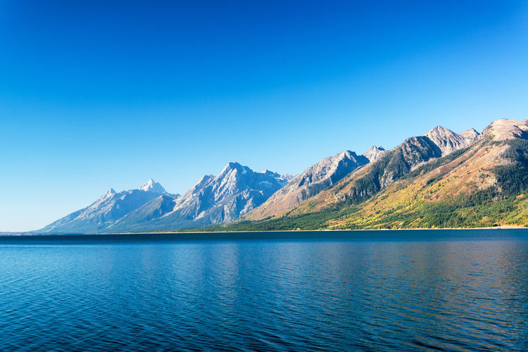 Teton Range and Jackson Lake on a beautiful clear day in Grand Teton National Park Alpine Bear Jackson Montana National Park Scenic Snake Tetons Travel Tundra USA Wyoming Destination Forest Grandtetonnationalpark Jackson Lake Landscape Lodge Mountain Overlook Peaks Range Valley Water Wilderness