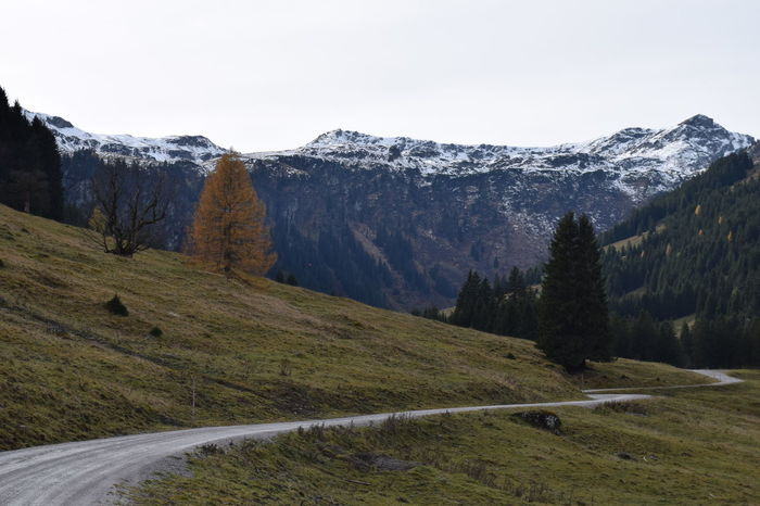 Road Cold Temperature Day Grass Mountain Mountain Range No People Outdoors Snowcapped Mountain Tranquility Yellow Tree Saalbach Hinterglemm