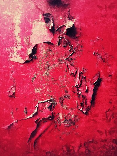 Red cracking and peeling paint on rusty metal in a texture background Texture Damaged Weathered Metal Metalwork Worn Decrepit Blistering Blistered Cracked Cracking Crimson Scarlet Peeling Paint Peeling Paint Red Full Frame Backgrounds No People Close-up Damaged Decline Deterioration Textured  Abstract Paint Splattered Run-down Colored Background