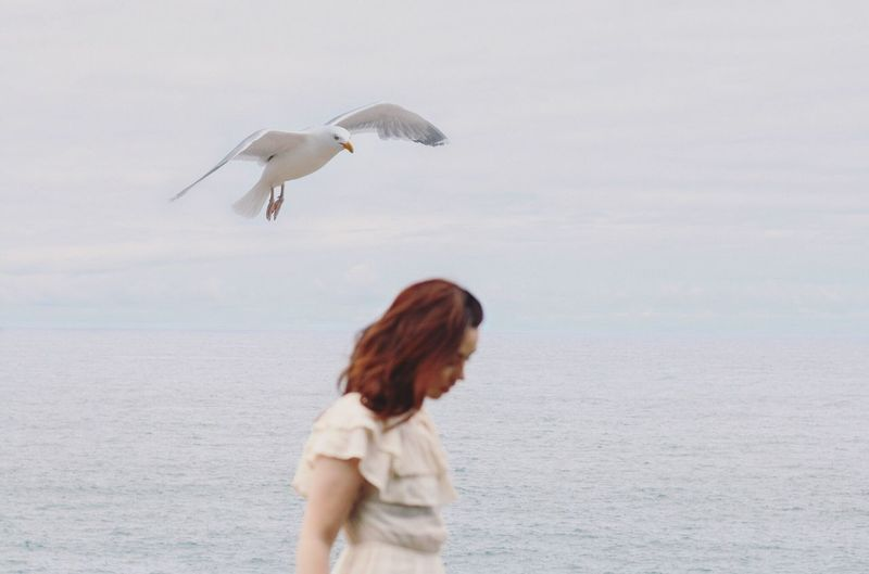 Seagull flying over woman at beach