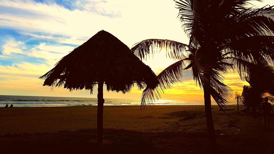 Playa Costa Azul Beach Beach Umbrella Beauty In Nature Day Horizon Over Water Idyllic Nature No People Outdoors Palm Tree Protection Sand Scenics Sea Shelter Shore Sky Summer Sunset Thatched Roof Tranquil Scene Tranquility Tree Vacations Water