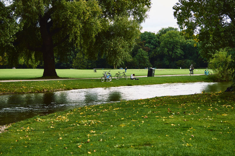 Scenic view of park by lake