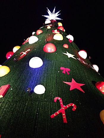 Grandiosa árvore de natal do Ibirapuera Árvore De Natal Pq. Ibirapuera Night Lights people watching (null)