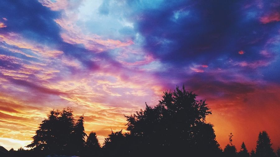 PNW Sunset Vscocam Fire Skies Silhouette