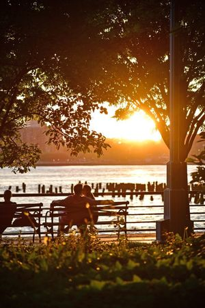 City Park Sunset Sunset_collection Hudson River Hudson River Greenway Water Sky Seat Sunset Silhouette Beauty In Nature Nature Real People Sunlight Men Bench Sitting Rear View Lifestyles Leisure Activity Tree Plant Sea Scenics - Nature Outdoors