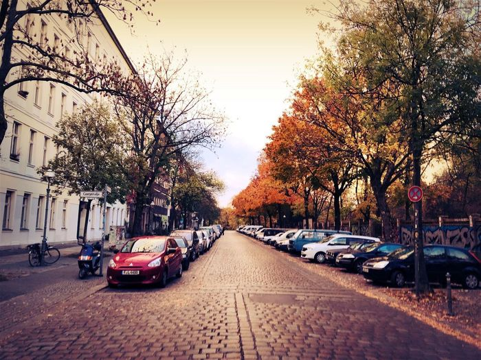 Cars on street by buildings against sky during autumn