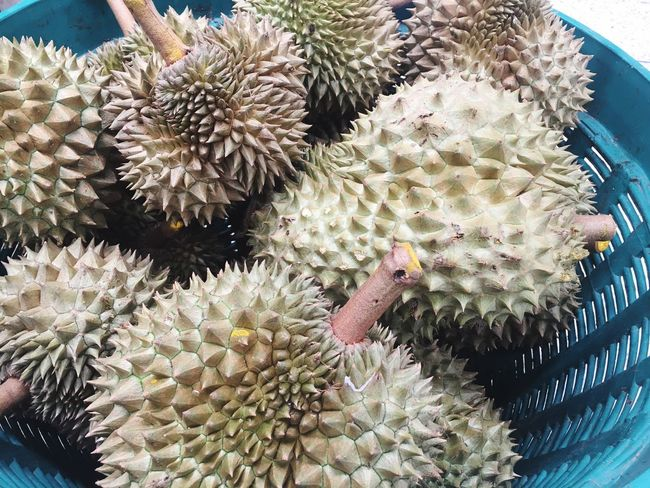 No People Food Close-up Freshness Day Durian Fruits EyeEm New Here