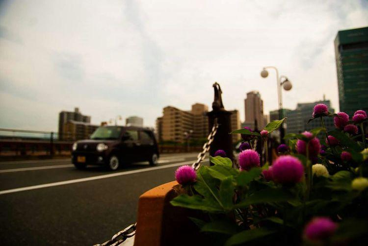 Street Style Walking Alone... Forever Alone Enjoying The Sights Lonely Girl Life Is Journey Traveling In Fukuoka Fukuoka City  Rainy Day In Fukuoka Ladyphotographerofthemonth Adapted To The City