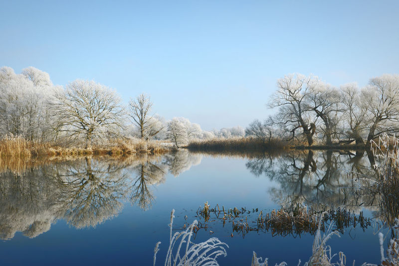 Havel River landscape on rime frost morning (Havelland, Germany) Brandenburg Frosty Frosty Mornings Havel Havel River Havelland Havelland Germany Havelradeweg Hoar Frost Hoarfrost Landscape Landscape_Collection Landscapes With WhiteWall Nature Reflection Rime Rime Ice Rime On Tree Tree Water Winter